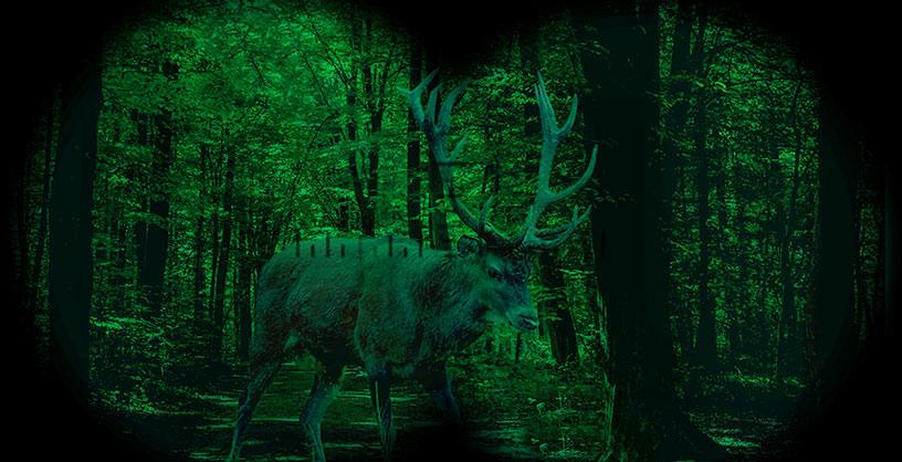 Jagdfernglas mit Nachtsicht